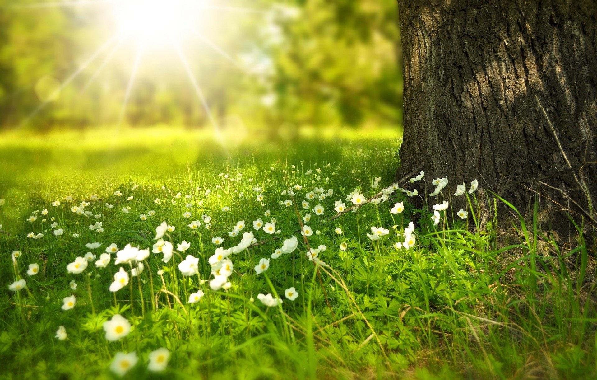 Wiosenne porządki w głowie i w sercu
